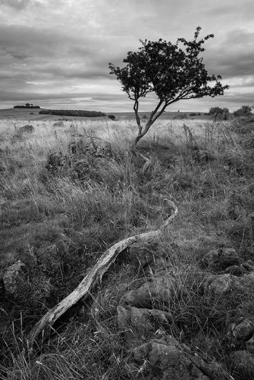 Roystone Rocks B_W by Jason Bould