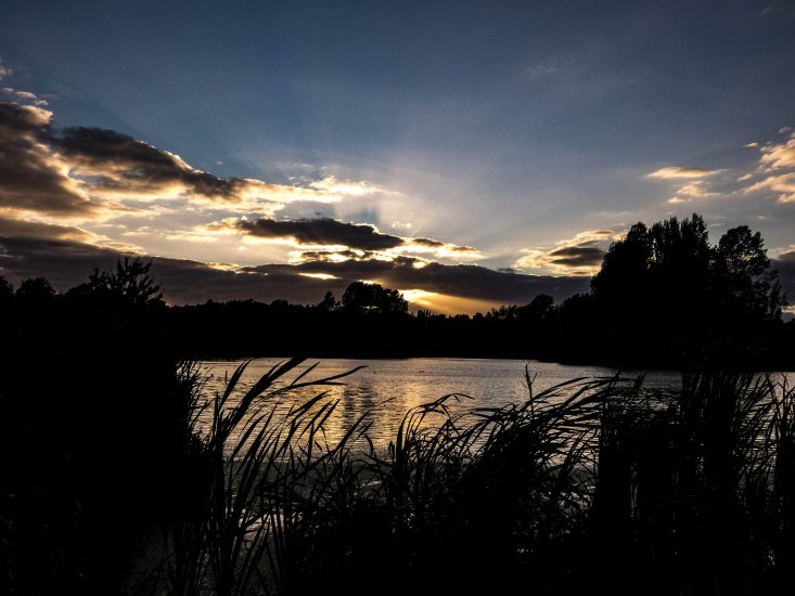 Whitfield Valley Nature Reserve Sunset by Alan Rust
